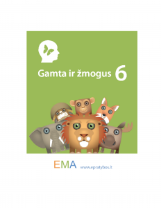 ema22-1